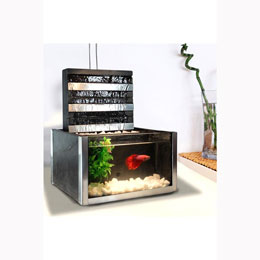 Indoor Fountain Aquarium (Or 51.00$ Cash)