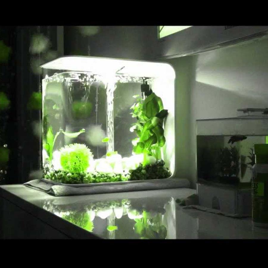 Fish & Aquariums Biorb Intelligent Heater With Powerpod. Pet Supplies