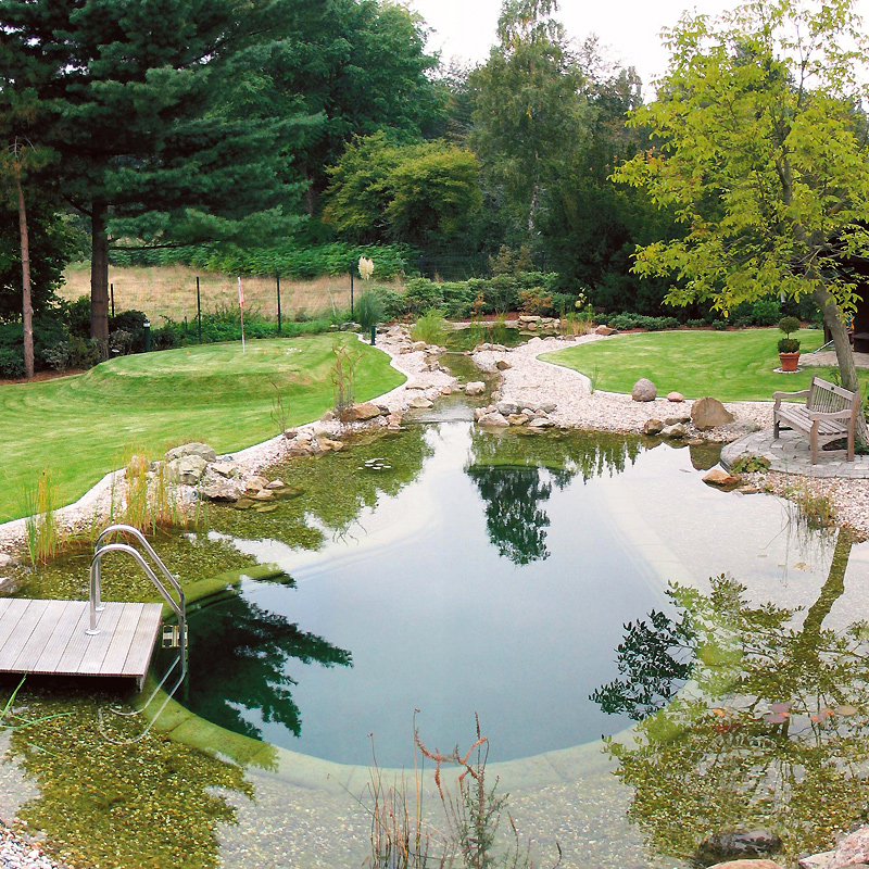 Type ii natural watercenter for Bassin de jardin pas cher